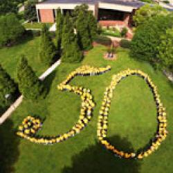 Aerial 50 photo