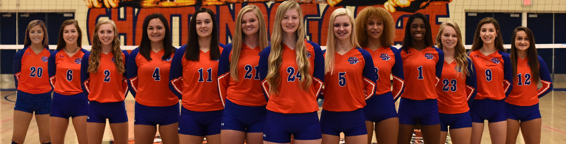 volleyball banner photo